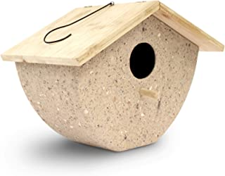 Eco-Friendly Recycled Bird House for Outside/Indoors/Hanging | Kits for Children & Adults | 1 Hole Coffee Husk Decorative Birdhouse & Home Decoration | Outdoors Feeder for Birds, Woodpeckers, Martins