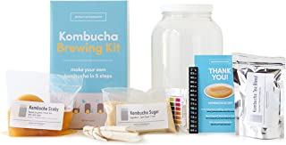 Kombucha Brewing Kit with Kombucha Scoby (Complete)