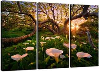 Nachic Wall Large 3 Piece Canvas Wall Art Calla Lily Flower at Nice Sunset Picture Canvas Painting Nature Forest Tree Landscape Artwork with Wood Frame for Home Living Room Farmhouse Wall Decor
