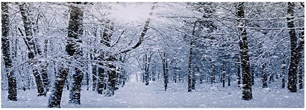A.Monamour White Snowy Forest Trees Hoarfrost Nature Landscape Scenery Graphic Print Soft Water Absorbing Flannel Anti-Ski...