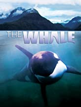 Best whale rider free movie Reviews