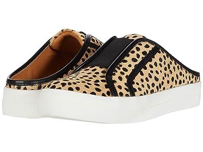 DV Dolce Vita Russel (Cheetah) Women