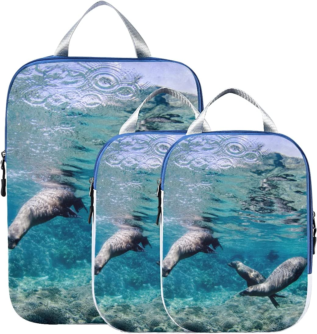 Packing Organizers For Luggage Max 73% OFF Cute Ugly Travel Sea 5 ☆ very popular Animal Lion