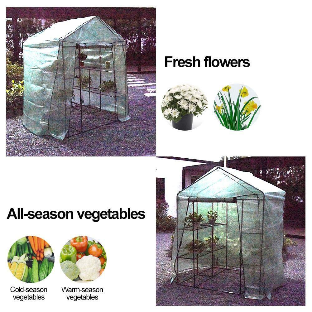Invernadero de jardín con 4/8 estantes, invernadero con cubierta reforzada, mini casa de cultivo con cubierta transparente para interior y exterior de hierbas flores patio balcón (Llegada dentro de 5 días): Amazon.es: