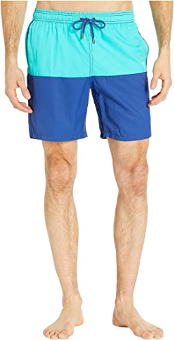 Color Block Dale Swim Trunks