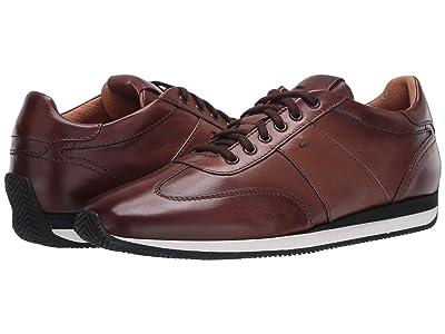 Santoni Parola Sneaker (Brown) Men