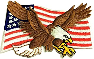 Patch Portal Bald Eagle American Flag 2x3 Inch US Patriotic Patches Emblem Bird Wings United States of America Animal Wild...