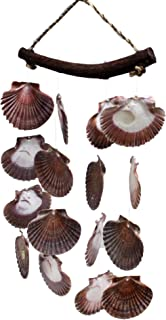 US Shell, Flat Windchime with Vibrant Colored Sea Shells