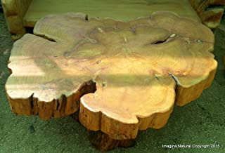 Large Naturally Unique Cypress Tree Trunk Handmade Coffee Table - Log Rustic Chilean - Free International Shipping.