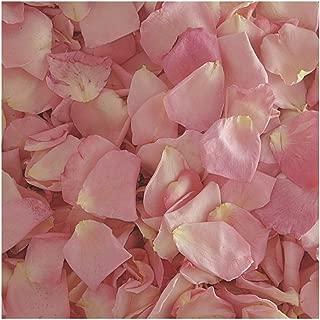 Rose Petals Bridal Pink 30 cups