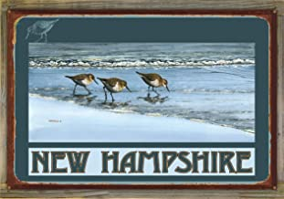 Northwest Art Mall New Hampshire Birds at Beach Rustic Metal Print on Reclaimed Barn Wood by Dave Bartholet (24