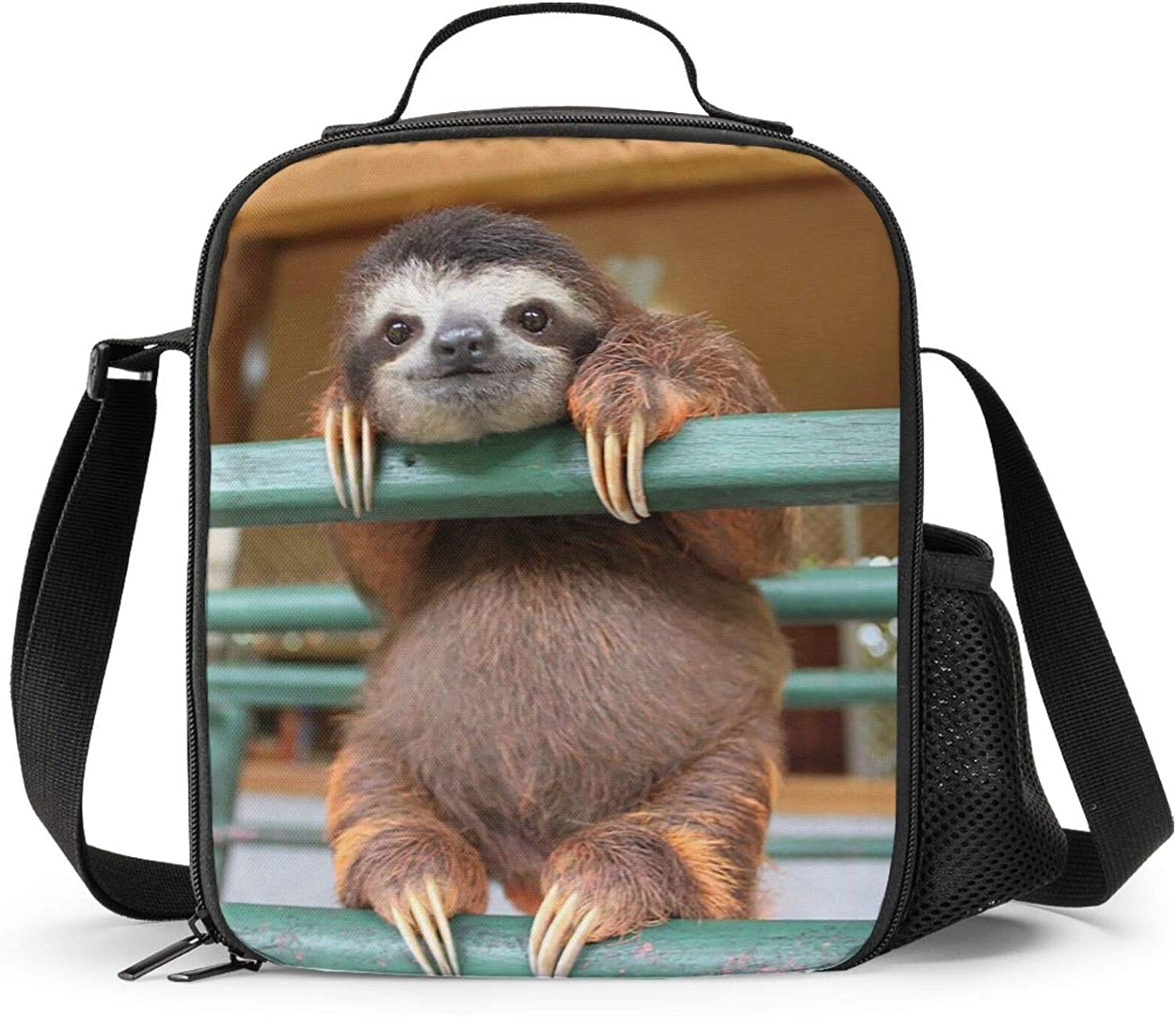 PrelerDIY Sloth Lunch Box Price reduction - 5 ☆ very popular Funny Insulated for 3 Kids