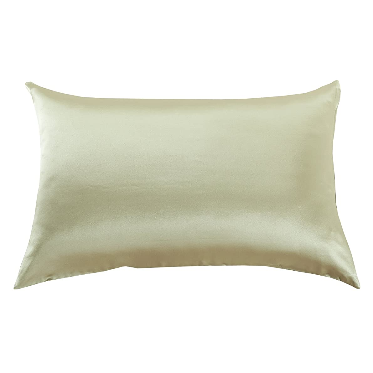 Orose 22MM Luxury Mulberry Silk Pillowcase, Good for Hair and Facial Beauty, Prevent from Wrinkle and Allergy, 100% Silk on Both Sides, Gift Wrap,1Pc (King, Light Green)