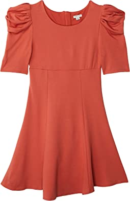 Puff Sleeve Flounce Dress (Big Kids)
