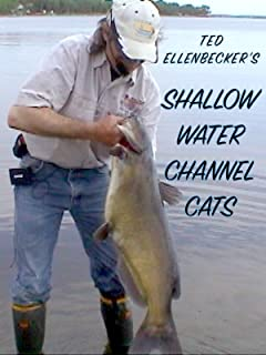 Shallow Water Channel Cats