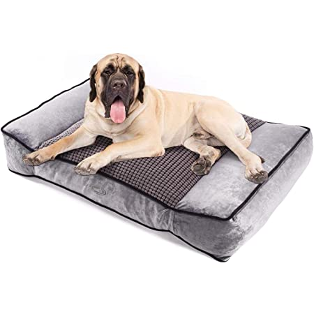 Pecute Dog Bed (40×27×8 in) with Warm & Cool Double-Sided, Orthopedic Foam Dog Beds, Breathable and Washable Large Dog Mattress with Removable Cover, Four Seasons Available