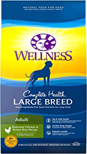 Wellness Complete Health Natural Dry Large Breed Dog Food