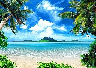 Daniu 7x5ft Playa de Verano Foto de Fondo del océano Playa Tropical Isla de mar Palmeras Cielo Azul Mar Sol Fotografía de Fondo Decoraciones para Bodas Decoraciones Fotomural Stand de Estudio