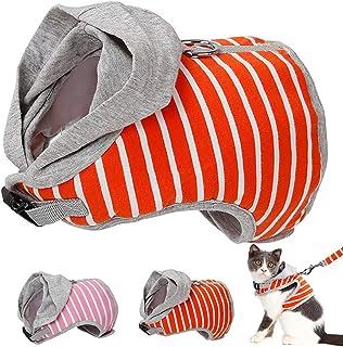 rot POPETPOP Auto Haustier Sicherheitssitz Hund Booster Sitz tragbare faltbare Haustier Autotransporter mit Sicherheitsgurt f/ür Reisen kleiner mittlerer Hund Katze Welpe