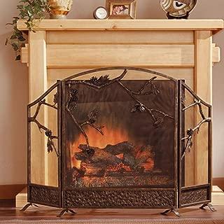 Best fireplace screens home depot Reviews