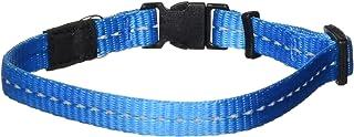 Rogz Reflective Dog Collar, Turquoise, Small