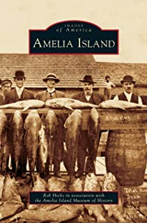 Best amelia island images Reviews