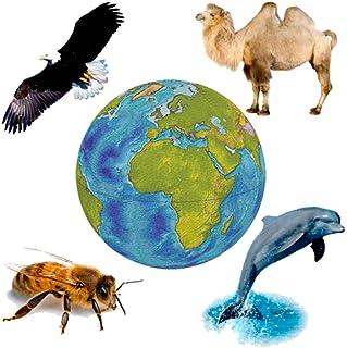 動植物の音 - 動物の声のコレクション