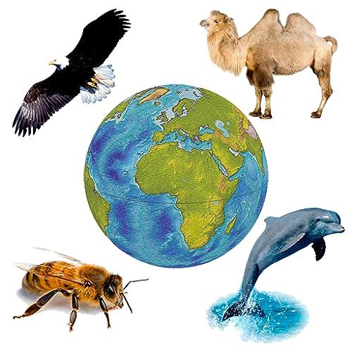 Sonidos de Fauna - Colección de tonos de animales