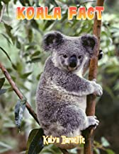 KOALA FACT: KOALA fact for girl age 1-10 KOALA fact for boy age 1-10 facts about all about KOALA