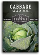 Survival Garden Seeds - Golden Acres Cabbage Seed for Planting - Packet with Instructions to Plant and Grow Your Home Vege...