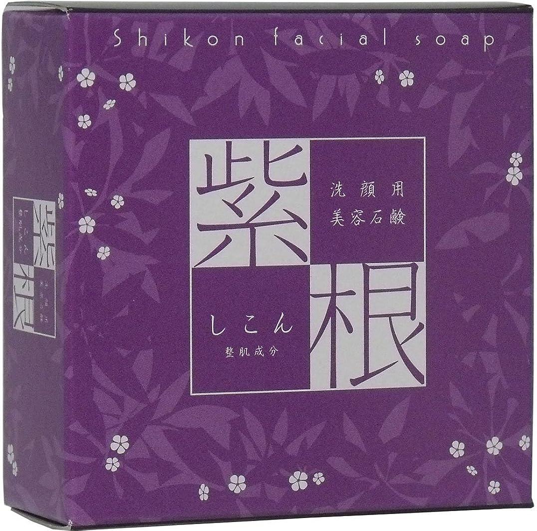スペル明確な芸術洗顔用 紫根石けん (泡立てネット付き) 100g