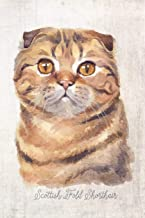 Scottish Fold Shorthair Cat Portrait Notebook: Blank Lined Journal for Cat Lovers, Cat Mom, Cat Dad and Pet Owners | 6x9 with College Ruled Pages