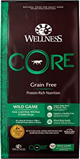 Wellness CORE Natural Turkey 26 Pound