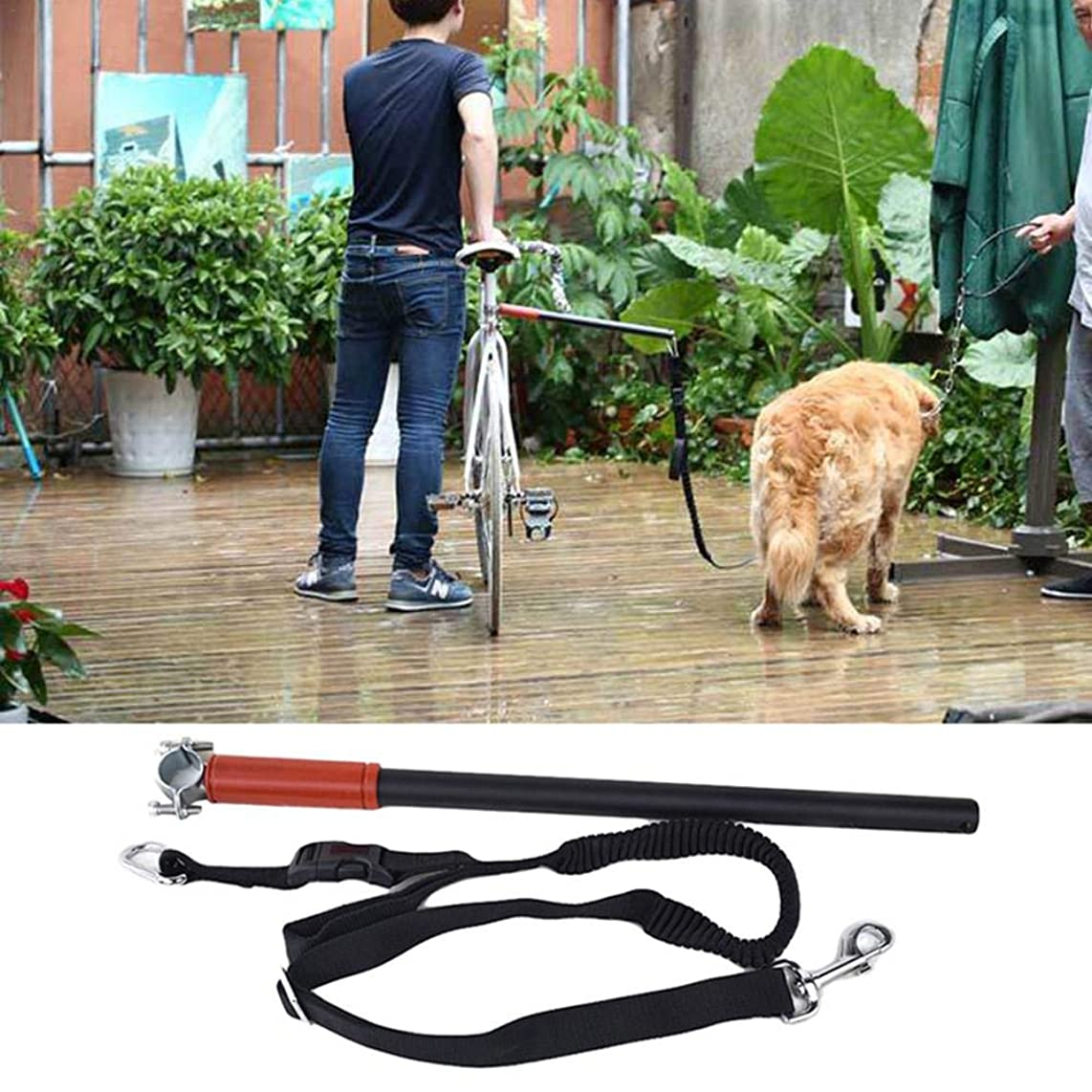Lijuan Qin Hands Free Bicycle Dog Exerciser Leash Pet Supplies for Exercising Training Jogging Cycling and Outdoor