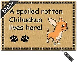 MsMr Door Mat Funny Entrance Floor Mat A Spoiled Rotten Chihuahua Lives Here! Indoor Ourdoor Doormat Non-Woven Fabric Top 23.6x15.7 Inch