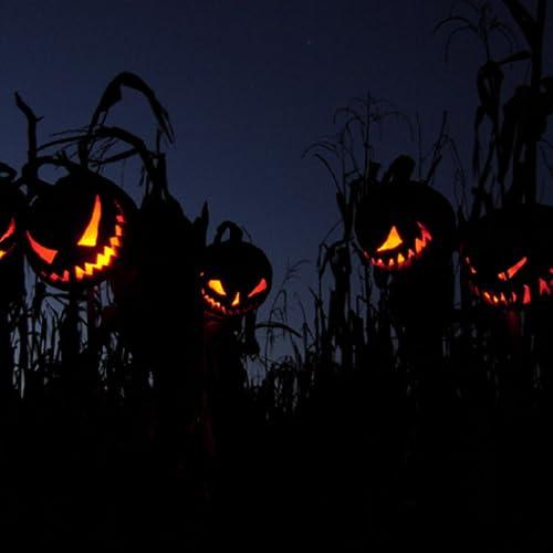 Your Halloween Live Wallpaper
