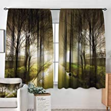 Mozenou Forest Room Darkening Curtains Water Channel Foggy Weather Trees Grass City Street at Winter Night Mystery Drapes for Living Room 72