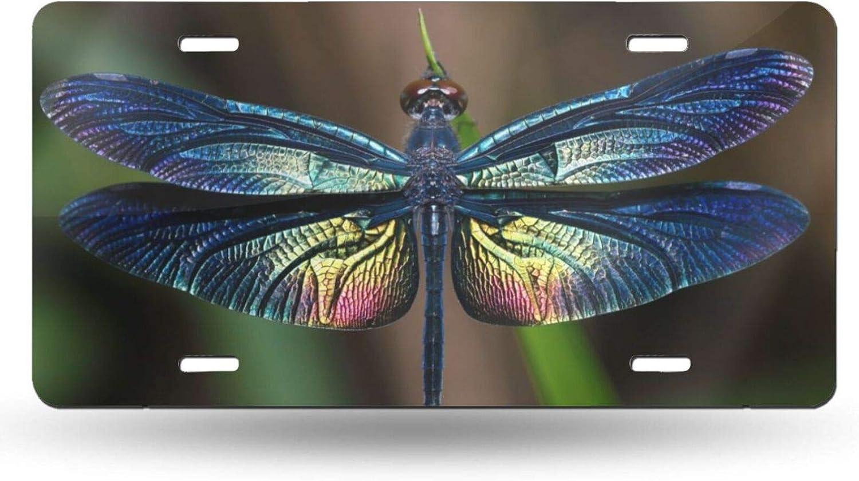 Max 84% OFF Dujiea License Max 51% OFF Plate Aluminum Wings Dragonflies of Car Tag Cove