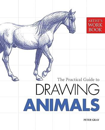 Artist's Workbook: Animals (English Edition)