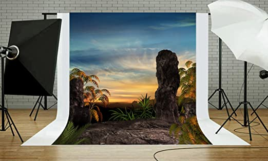 Party Wedding Business Use Photo Extraterrestrial geomorphology Pictorial Cloth Background Customized 5x7FT Computer-Printed Vinyl Space Moon Photography Backdrop Studio Retro Prop,Booth