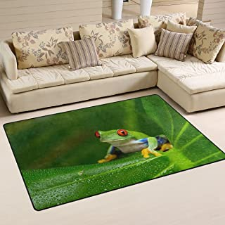 COOSUN Red-Eyed Amazon Tree Frog Area Rug Carpet Non-Slip Floor Mat Doormats for Living Room Bedroom 31 x 20 inches