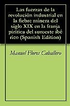 Las fuerzas de la revolución industrial en la fiebre minera del siglo XIX en la franja pirítica del suroeste ibérico (Spanish Edition)