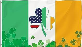 american and irish flag together