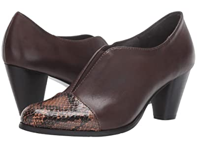 Spring Step Carolyne (Chocolate Brown) Women