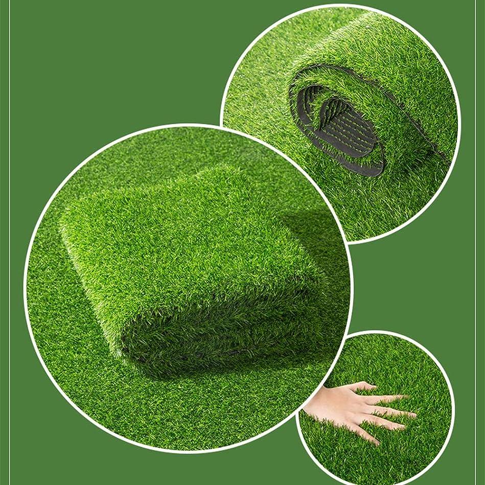 くそー換気する合唱団GAPING 人工芝屋内屋外バルコニーガーデン緑の風景緑の装飾人工芝カーペット10 Mm高 (Size : 2x5m)