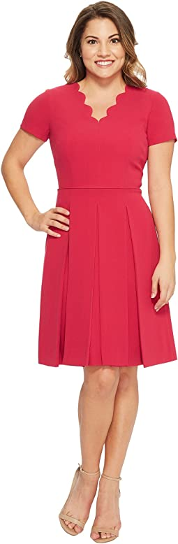 Petite Scallop Fit and Flare Dress