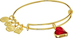 Alex and Ani - Charity By Design Heart Of Strength Bangle - (PRODUCT)RED