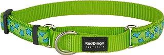 طوق مارتينجال من ريد دينغو بلون أخضر ليموني مع نجوم تركواز Small MC-ST-LG-12