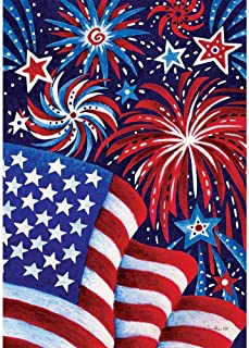 Custom Decor Fireworks and Flag - USA - Standard Size, Decorative Double Sided, Licensed and Copyrighted Flag - Printed in The USA Inc. - 28 Inch X 40 Inch Approx. Size
