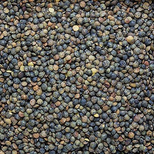 Linsen, grün - Lentilles du Puy, traditioneller Anbau, Frankreich, 1 kg